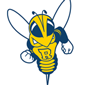 University of Rochester Yellowjackets Softball Camps